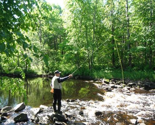 Fête de la pêche 2015
